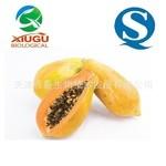 【厂家直销】【秀谷】 果蔬粉 —木瓜粉