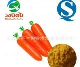 【厂家直销】【秀谷】 果蔬粉 — 胡萝卜粉