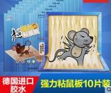 科凌虫控超强力粘老鼠板 灭鼠器灭老鼠板捕鼠器10个装