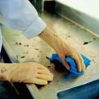 Ansell安思尔Just Natural™ 321X通用橡胶手套一副,清洁实验室手套,食品级认证
