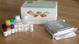 江苏维赛链霉素酶联免疫检测试剂盒,间接竞争ELISA法,链霉素检测