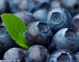 1109608700蓝莓香精