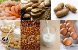 食品中过敏原快速检测试剂盒——西宝生物张红18301893121