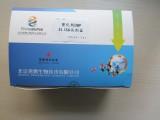 塑化剂DBP ELISA试剂盒 塑化剂快速检测