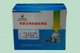 面粉过氧化苯甲酰速测盒 面粉食品安全检测 PZ-JC- CJ82