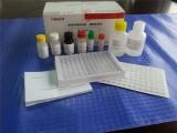 猪乙型脑炎病毒IgG检测试剂盒(酶联免疫法) 猪乙型脑炎检测和诊断