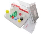 氯霉素检测试剂盒 氯霉素检测方法 氯霉素检测结果分析