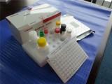 猪细小病毒IgG检测试剂盒(酶联免疫法)猪细小检测 诊断