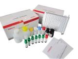 磺胺十五合一检测试剂盒 磺胺检测 兽药检测 特价试剂盒