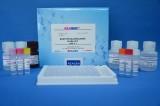 美国REAGEN乙氧基喹啉残留量酶联免疫反应检测试剂盒