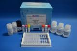 美国REAGEN林可霉素酶联免疫反应检测试剂盒
