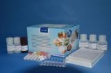 美国REAGEN氟苯尼考残留酶联免疫反应检测试剂盒