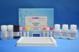 美国REAGEN尼卡巴嗪酶联免疫反应检测试剂盒