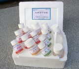 天河绿洲 农残速测试剂(大容量96孔法) 农药残留快速检测